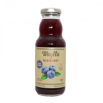 Nectar de Arándano 300 ml